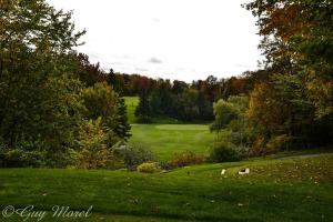 golf-quebec-aube