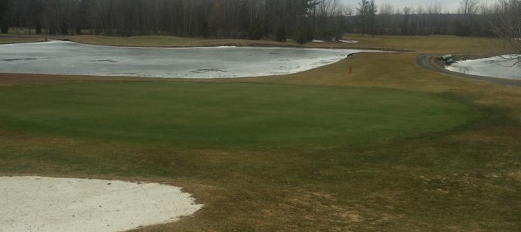 Du golf ce vendredi au Québec!